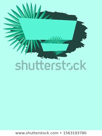 Estate vendita emblema esotiche albero foglia Foto d'archivio © robuart