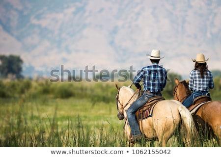 ストックフォト: 美しい · カップル · ライディング · 馬 · 山 · 空