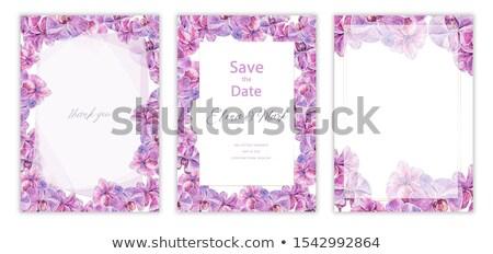 Akwarela ilustracja tropikalnych piękna magnolia granicy Zdjęcia stock © Margolana