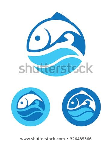 синий икона рыбы логотип вектора эмблема Сток-фото © blaskorizov