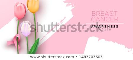Rak piersi świadomość banner różowy tulipan wstążka Zdjęcia stock © cienpies