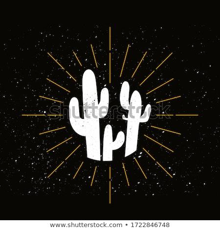 retro cactus silhouette logo stock photo © barsrsind