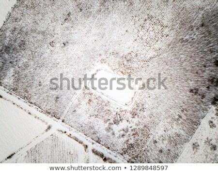 Antena zimą krajobraz zamrożone staw tle Zdjęcia stock © digoarpi
