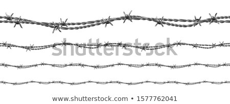 Twisted Iron Wire Seamless Pattern Set Vector Stock photo © pikepicture