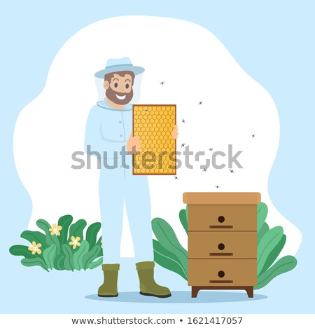 Beekeeper Collect Honey, Unload Honeycomb in Frame Stock photo © robuart