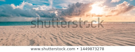 Zeegezicht zon strand zonsondergang zand roze Stockfoto © liolle