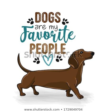 собаки любимый люди смешные рисованной Сток-фото © Zsuskaa