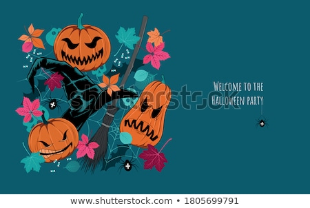 Wicked witches on night background Stock photo © bluering