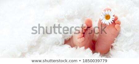 ストックフォト: 足 · 白 · デイジーチェーン · 花