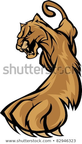 Stock foto: Cougar Mascot Body Prowling Vector Graphic