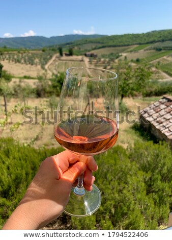 Wine Glass in front of rural background Stock photo © Francesco83