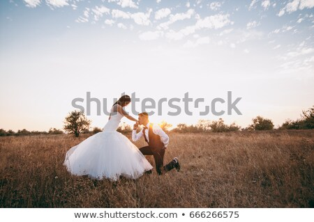 Newly married couple kissing on the beach. Stock photo © Massonforstock