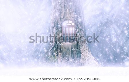 凍結 · 妖精 · ファンタジー · 肖像 · 美しい · 若い女性 - ストックフォト © zastavkin