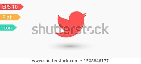 twitter · ikon · kék · izolált · fehér · számítógép - stock fotó © zeffss