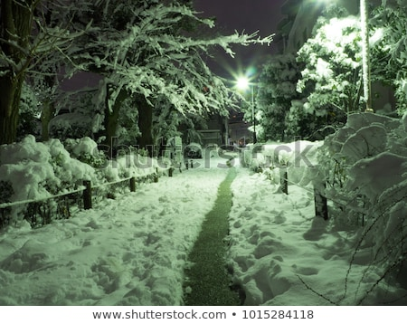 Kapalı kar iki kış manzara buz Stok fotoğraf © saje