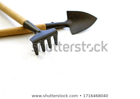 small rake stock photo © photography33