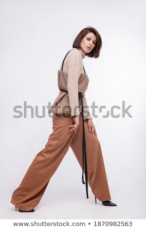 Bella giovani bruna corsetto posa pelliccia Foto d'archivio © acidgrey