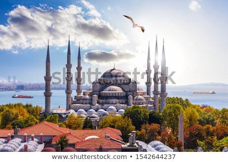Sultanahmet Mosque Stock photo © HypnoCreative