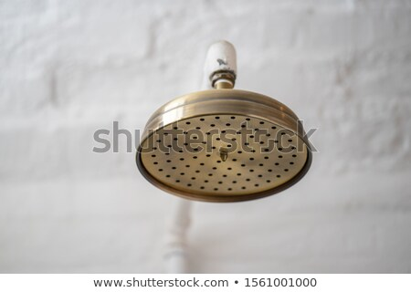 Metallic shower head Stock photo © ozaiachin