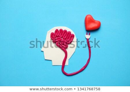 heart intelligence stock photo © lightsource