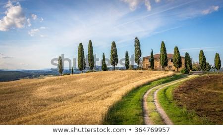 tuscany landscape with farmhouse and yellow sky pienza italy stock photo © fisfra