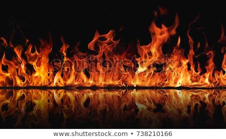 火災 炎 反射 難 孤立した オレンジ ストックフォト © Vladimir