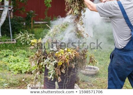 Bahçe çöp Metal yeşil plastik geri dönüşüm Stok fotoğraf © gllphotography