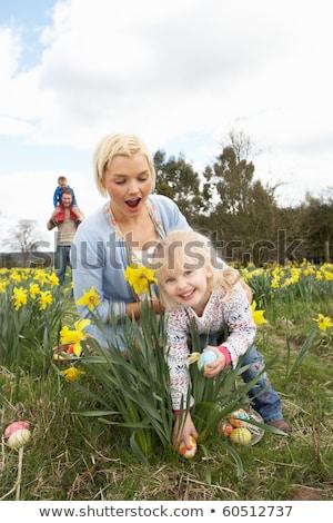 Aile easter egg hunt nergis alan kadın çocuk Stok fotoğraf © monkey_business