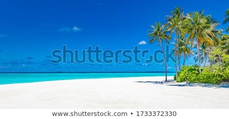 Tranquil scene Stock photo © natika