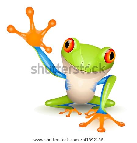 Stok fotoğraf: üçük · Ağaç · Kurbağası