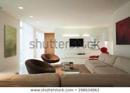 sofá · canto · quarto · parede · luz · mobiliário - foto stock © serp