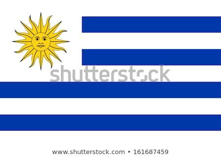 Banderą Urugwaj wykonany ręcznie placu słońce Zdjęcia stock © k49red
