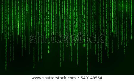 Streszczenie zielone matrycy Internetu świetle technologii Zdjęcia stock © Taiga