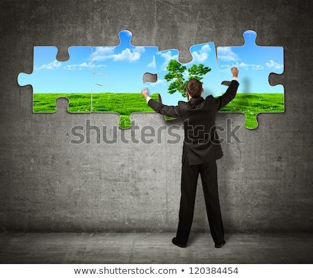 protect nature puzzle Stock photo © bendzhik