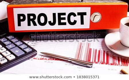 Red Ring Binder with Inscription Development Plan. Stock photo © tashatuvango