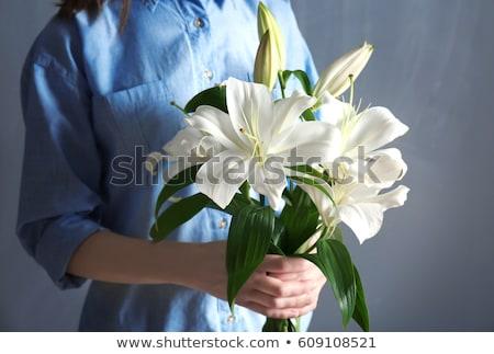Jonge vrouwelijke witte lelie vrouw natuur Stockfoto © konradbak