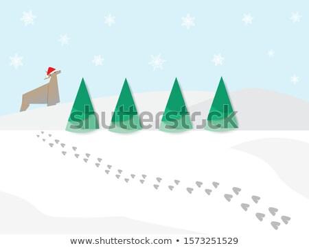 Ayak izleri hayvan izlemek kar ayak Stok fotoğraf © Mps197