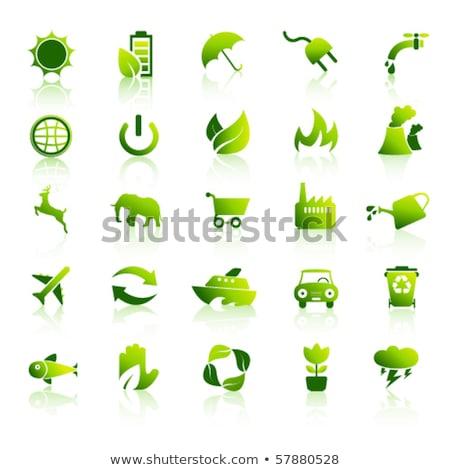 Appel gloeilamp groene energie geïsoleerd witte aarde Stockfoto © michaklootwijk