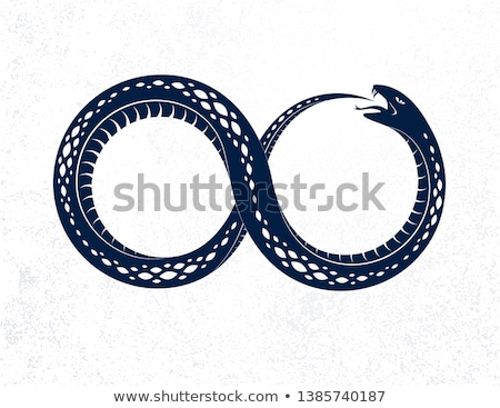 The symbol of Ouroboros snake  Stock photo © shawlinmohd