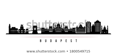 Horizonte Budapest colina puente Hungría Foto stock © szabiphotography