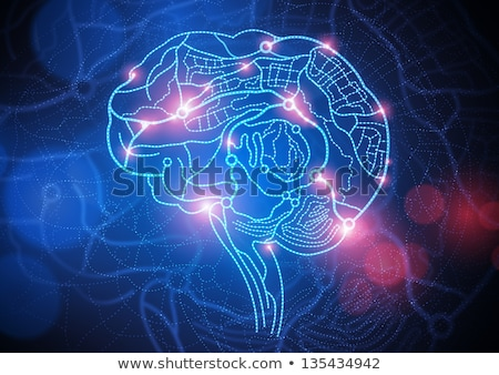 Brain Mapping Stock photo © Lightsource