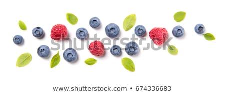ripe berries ornamental frame of blueberry and raspberry. Stock photo © natalya_zimina