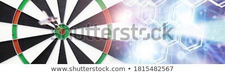 Shooting sports Stock photo © bluering