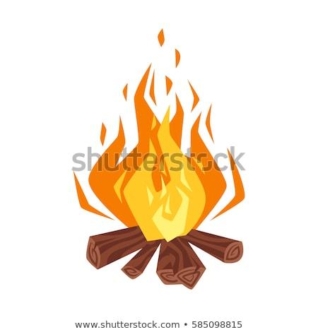 tábor · tűzifa · illusztráció · gyerek · gyűlés · fa - stock fotó © rastudio