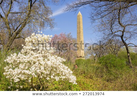 Egypian obelisks, Central Park, NYC  Stock photo © Vividrange