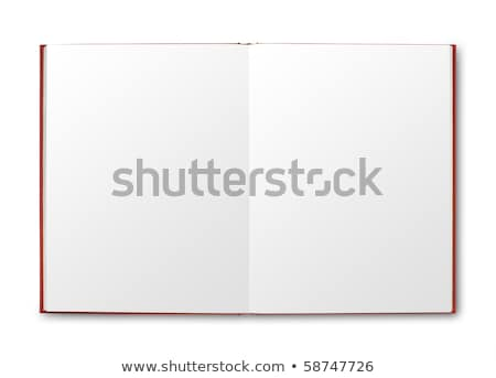 Open Red Book Icon Stock photo © robuart