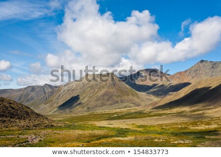 Summer landscape. Ural mountains. A green meadow Stock photo © ISerg