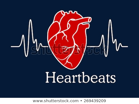 Menselijke hart anatomie Blauw gezondheidszorg arts Stockfoto © Tefi