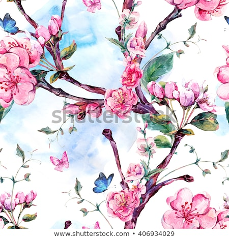 decorative frame from flowering branches of apricot tree stock photo © kotenko