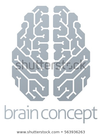 Stylised 3D Brain Stock photo © idesign